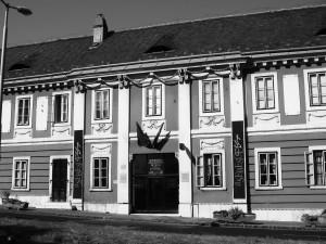 Wamser-Krasznai Semmelweis Bild 1