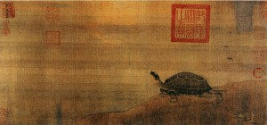 Simon-Humility-Schildkröte