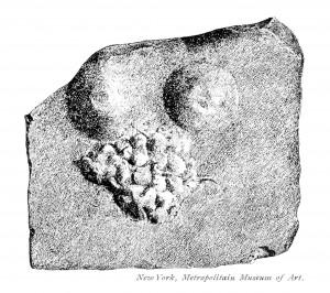 Wamser-Krasznai-Bild 6 Weibliche Brust mit Traube